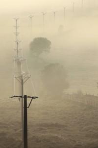 Lignes dans la brume